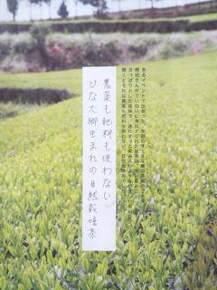 商品案内自然栽培茶2.jpg