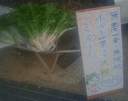chokubai1.jpg